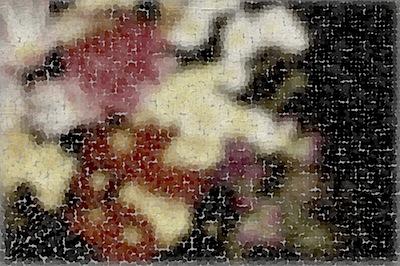 201004260355.jpg